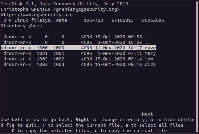 A Home directory in testdisk in a terminal window.