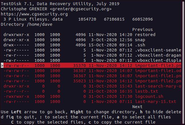 Deleted files in TestDisk in a terminal window.