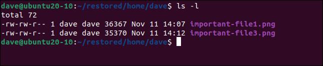 ls -l in a terminal window.