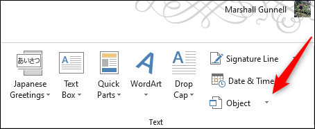 Object option in Text group