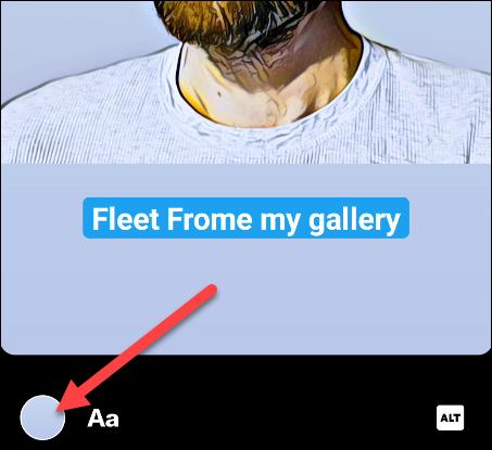 fleet from gallery
