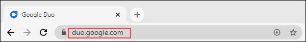 URL do site google duo
