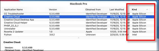 """Em """"Informações do sistema"""", procure """"Silício Apple"""" na coluna """"Tipo""""."""