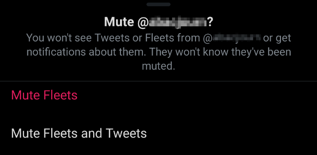 Mute fleets and tweets on Twitter