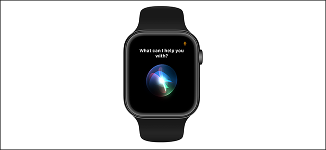 sample image activating Siri on an Apple Watch