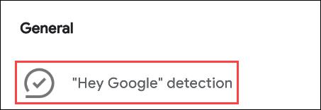 select hey google detection