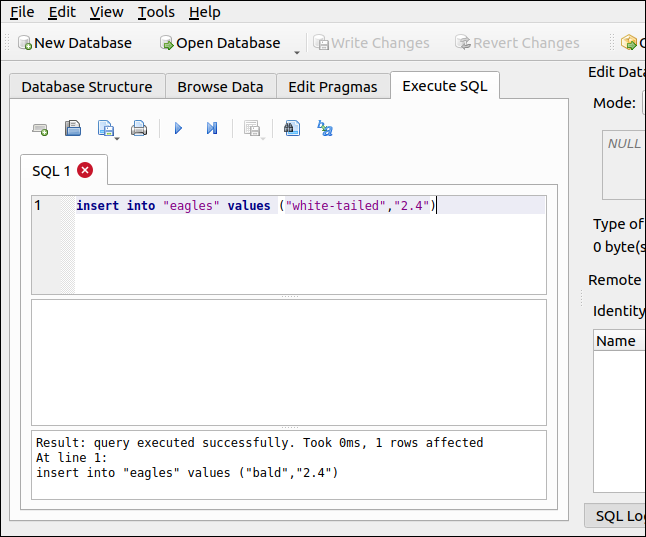 An INSERT SQL statement in the Execute SQL tab in DB Browser for SQLite