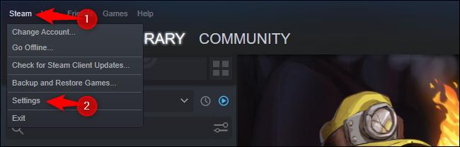 Click Steam > Settings.