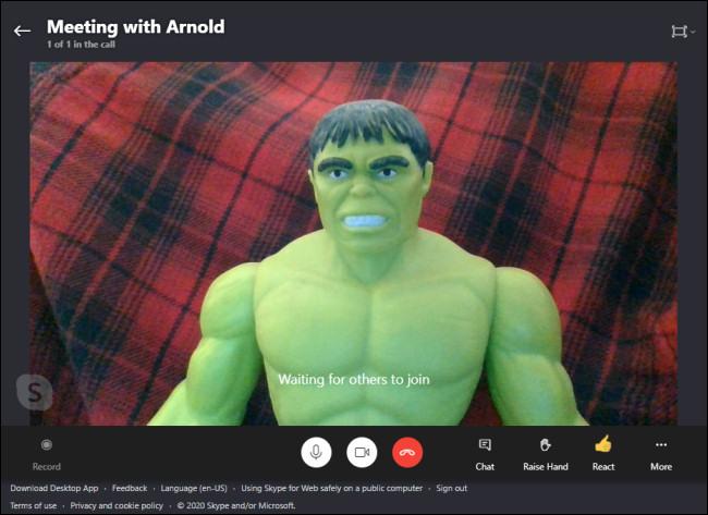An example Skype Meet Now screen.