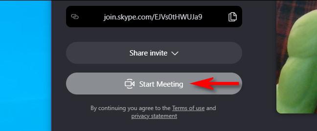 """Click """"Start Meeting."""""""