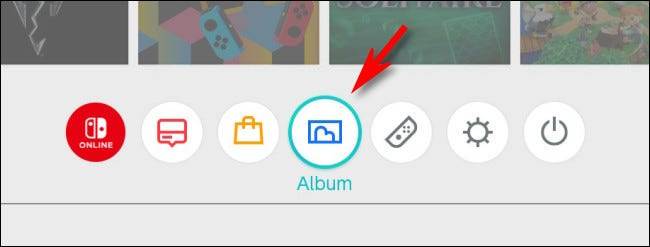 On the Switch HOME screen, select the Album icon.