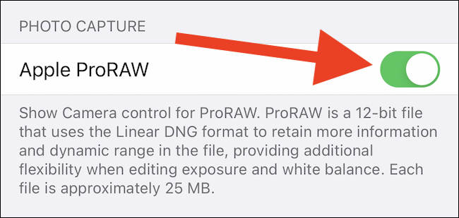 Toggle on Apple ProRAW