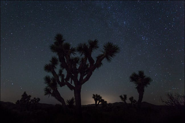 night landscape photos joshua tree