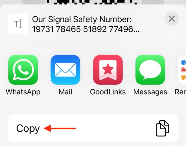 Copy Safety Number
