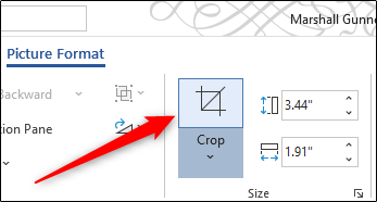 Crop icon in Word ribbon