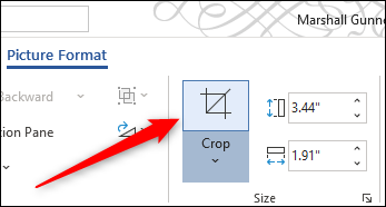 Crop icon in Word's ribbon