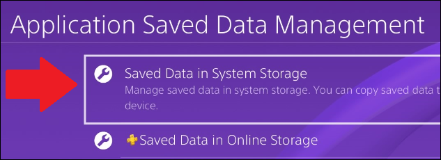 "Select ""Saved Data in System Storage."""