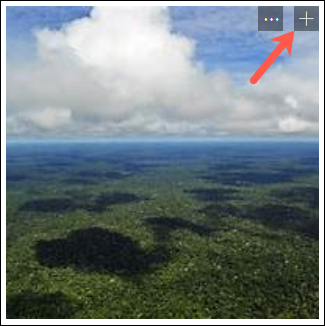 Click the plus sign to add an image