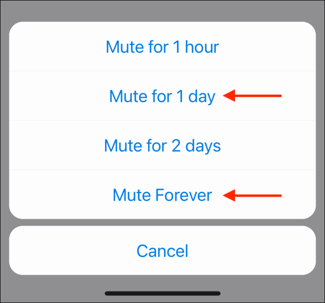 Select Mute Time Frame