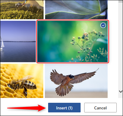 Select and insert image