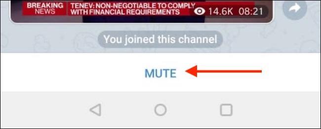 Tap Mute to Mute Telegram Channel