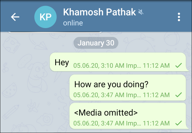 WhatsApp Chat Imported in Telegram for Android