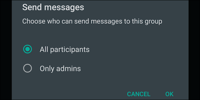 Select All Participants setting for WhatsApp group messages