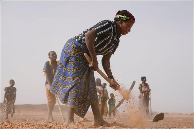 Ecosia pomaga biednym rolnikom na całym świecie