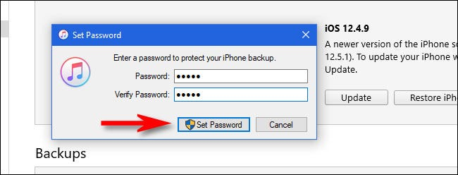 """In iTunes, enter a password and click """"Set Password."""""""