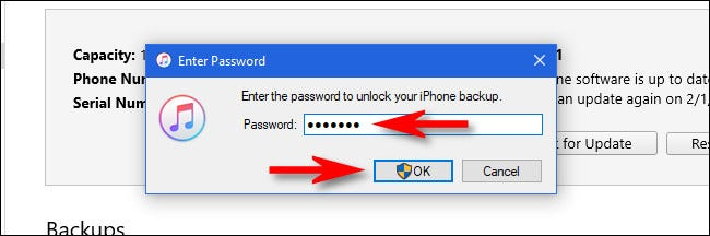 "In iTunes, enter a password and click ""OK."""