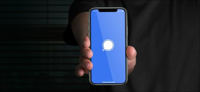 A Signal app splash screen on an iPhone.