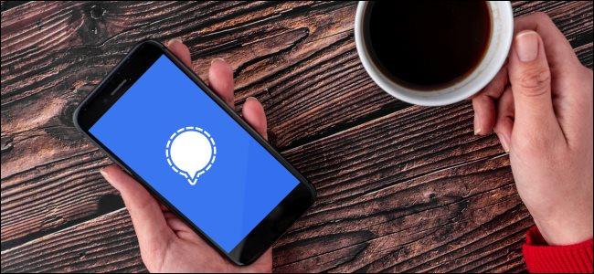 Signal logo on a smartphone