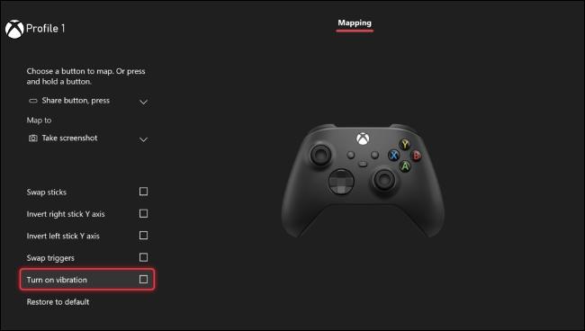 Disable Rumble on Xbox One/Series X|S