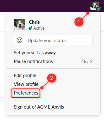 "The ""Preferences"" option on the user menu."