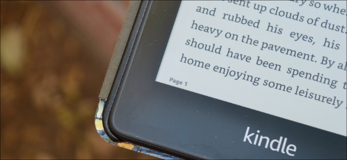 Kindle User Viewing Real Page Number of Book