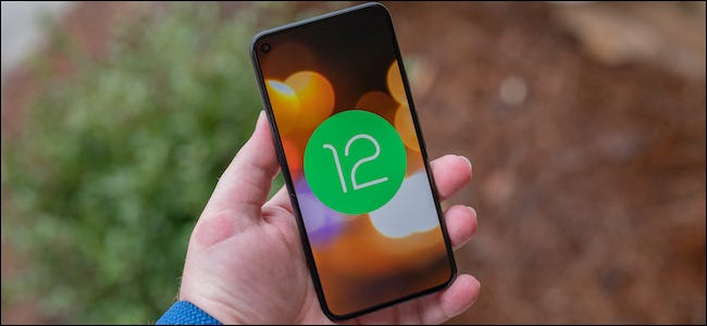 Android 12 logo on a Google Pixel 5