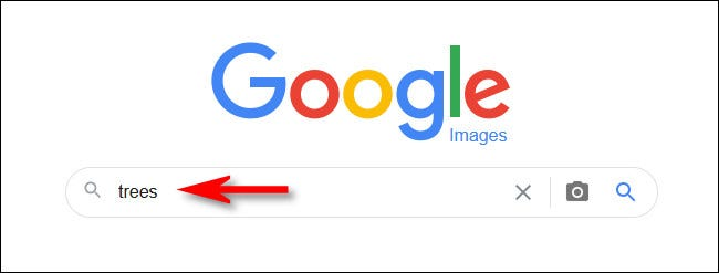 Type your search into Google Images and hit Enter.