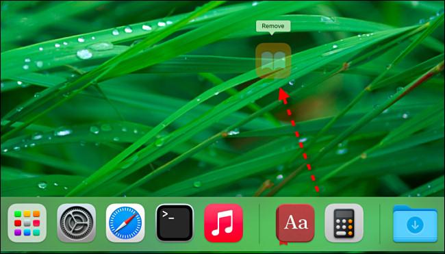 """Arraste o ícone de um aplicativo para longe do dock até que diga """"Remover"""" e, em seguida, solte o botão do mouse."""