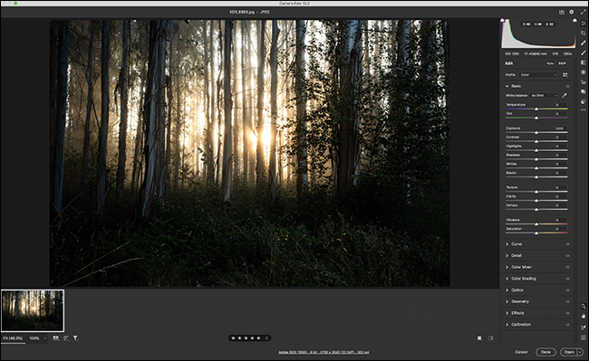 An image open in ACR.