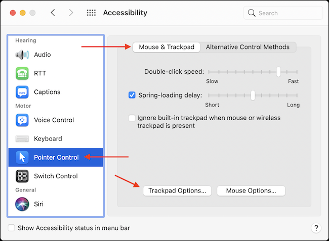 Go to Trackpad Options in Accessibility