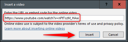 Paste the URL into the text box and click on it