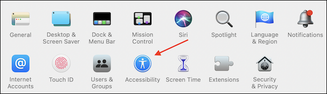 Open Accessibility from System Preferences