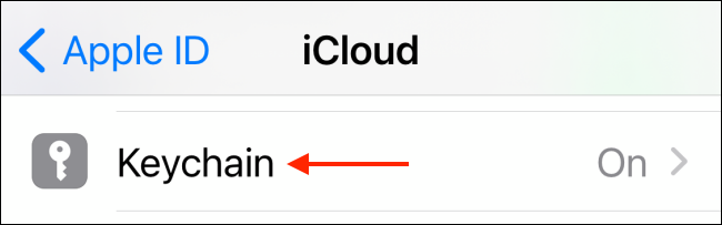 Tap Keychain from iCloud Settings