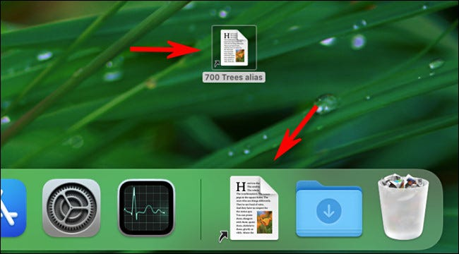You can place an alias almost anywhere, including on your desktop or in the Dock.
