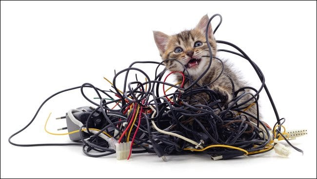 A kitten gnawing on a pile of wires.