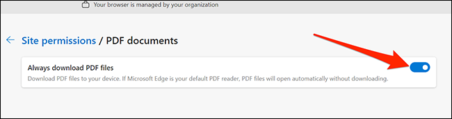 Download PDF option in Edge