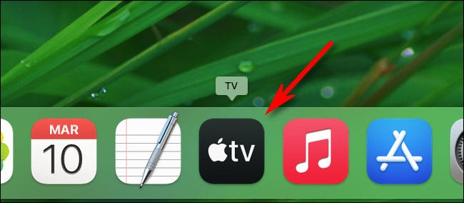 The app icon is now in the Dock.