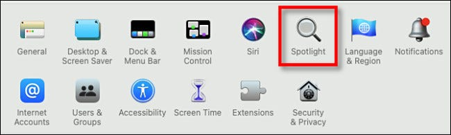 "In System Preferences, click ""Spotlight."""