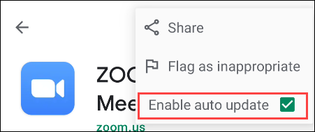 """Uncheck the """"Enable Auto Update"""" option."""