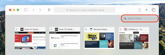 """The """"Search Tabs"""" bar in Safari's Tab Switcher on Mac"""